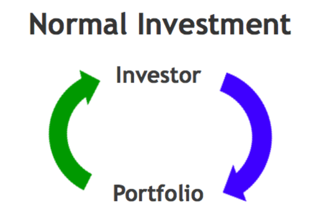 Normal investment: Direct loop between investor and portfolio